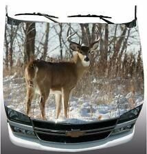 Big White Tail Broadside Stance Wrap Vinyl Graphic Decal Sticker Wrap Truck Car