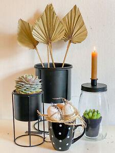 Blumentopf auf Gestell Schwarz Edel Schlicht 3 Größen