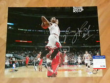 DERRICK ROSE 'CHICAGO BULLS' SIGNED 16X20 PICTURE 3 *PSA/DNA 4A07441