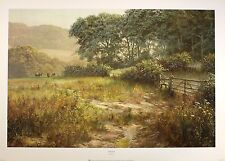"DAVID DIPNALL ""Forestside"" field gate countryside PRINT SIZE:50cm x 75cm  RARE"