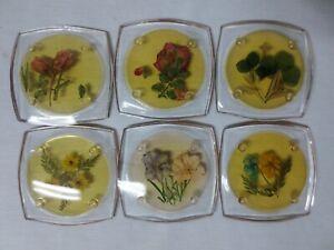 Vtg Set of (6) Mid-Century ACRYLIC Drink Coasters Pressed Flowers Table Bar