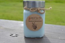 Berrylicious Scented Candle 10 oz. Jar