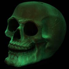 Spardose 11,5 cm Gruseliger Glow in the Dark Totenkopf Gothic Skull Schädel NEU