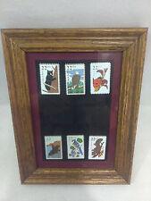 Set Of 6 Wildlife Stamp Pin Framed United States Postal Service   USPS