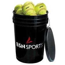 "24 Practice Softballs with bucket included 12"" Softballs"