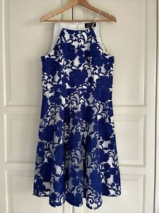 Review Limited Edition fit and flare Dress Size 14 RRP $350 Rare