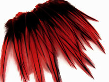 10 Pieces - Red Dyed BLW Laced Short Rooster Cape Whiting Farm Feathers Craft