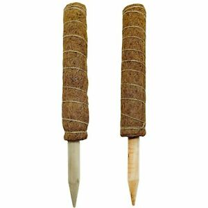 2x40cm Coir Moss Totem Pole Plant Extension Support Creeper Potted Support Stick