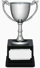 Nickle plated Cup C trophy boxed with handles trophies free engraving 18 cms