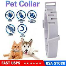 Adjustable Flea & Tick Collar 8months Protection Anti Insect for Pet Dog Cat Us