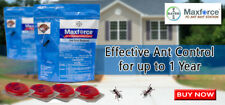 MAXFORCE ANT BAIT STATIONS - 5 COUNT - ANT KILLER - KILLS ANTS FAST!