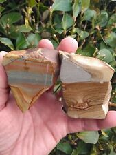 TWO (2) POLISHED RARE PICTURE JASPER DISASTER PEAK NEVADA DEER SKY OWYHEE 15OZ!