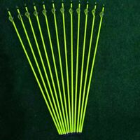 """12pcs 31"""" Pure Carbon Arrows 2"""" Feather Spine 300 Compound Bows Hunting"""