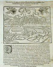 Windsheim Gesamtansicht Mittelfranken Holzschnitt Sebastian Münster 1576