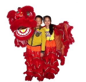 Lion Dance Chinese Folk traditional Culture mascot Costume two kids stage prop