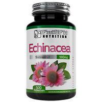 Echinacea 500 Tabletten je 500mg XXXL Big Pack Die preiswerte Alternative