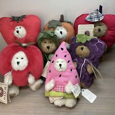 """Lot: Boyds Bears """"Best Dressed"""" Series Larger Bears in Veggie and Fruit Costumes"""