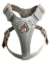 Grey Leather Dog Harness with English Bull Terrier Head Motif