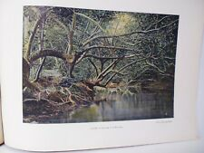 TAHITI: Gravure 19° in folio couleur / UN COIN DE LA PAUTANA