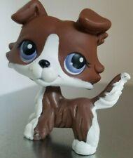 ~~~Littlest Pet Shop 100% Authentic No # Puzzle *Collie* Brown Blue Eyes~~~~