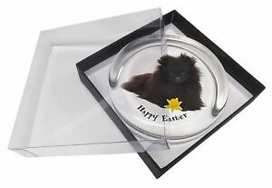 'Happy Easter' Pomeranian Glass Paperweight in Gift Box Christmas , AD-PO90DA1PW