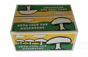 All-In-One Grow Your Own Mushrooms Kit / White Button Mushroom Growing Kit seed