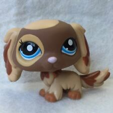 Littlest Pet Shop Animal Collection LPS Toy #2570 King Charles Spaniel Puppy Dog