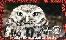 "GREEN EARTH CANADA GIFT CARD ""OWL"" NO VALUE NEW 2018 COLLECTIBLE RARE"
