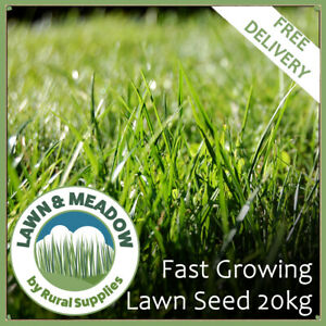 Fast Growing Lawn Grass Seed 20KG-RAPID QUICK GROWTH NEW LAWNS OR PATCH & REPAIR