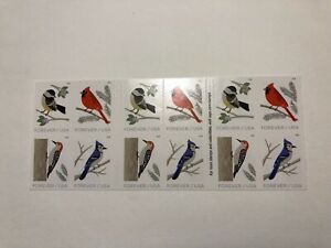 US Stamp, Scott 5320b, Birds in Winter, Double Sided Booklet of 20