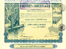 Belgien Exploitations Forestieres est Agricoles, alte Aktie 1927 Elefant Kolonie