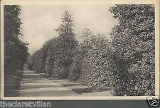 Royal Botanic Gardens Kew Holly Walk  Love Lane Richmond Old Unposted Postcard