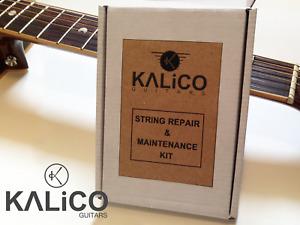 Guitar String Maintenance Kit