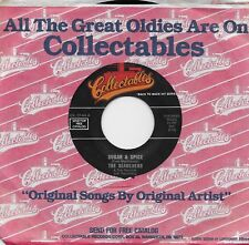 THE SEARCHERS  Sugar & Spice / Don't Throw Your Love Away 45