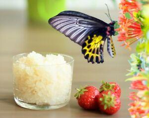15g Kefir Wasserkefir Tibi 100 % Bio täglich frisch Kefir wächst sehr schnell