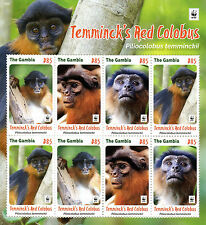 Gambia 2016 MNH Temminck's Red Colobus WWF 8v M/S Monkeys Wild Animals Stamps