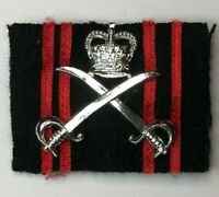 1990's British Army Physical Training corps Chrome Badge With Backing cloth