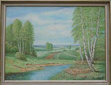 Paesaggio con Betulle & Corso Del Fiume -ölgemälde Autografato W.Lorenz