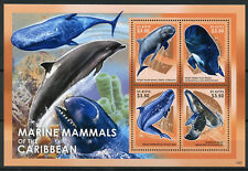 St Kitts 2013 MNH Marine Mammals of Caribbean Sperm Whale 4v M/S Whales Stamps
