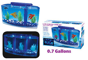 Betta Tank Deluxe, New, BBT4 3 Compartments, for Kids, Home or Office