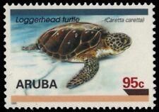 "ARUBA 128 - Loggerhead Turtle ""Caretta caretta"" (pb18818)"