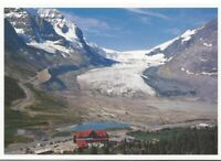 Athabasca Glacier Jasper National Park Canada Postcard Byron Harmon