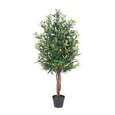 "Vickerman 50"" Artificial Olive Tree in Black Plastic Pot"