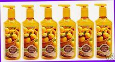 6 Bath & Body Works GOLDEN AUTUMN CITRUS Deep Cleansing Hand Soap