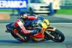 Barry Sheene Superbike Legend 1982 10x8 Photo Avg