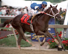 Smarty Jones 2004 Preakness Stakes Finish Photo 8x10