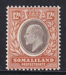 SOMALILAND PROTECTORATE EDVII SG53a - 12a grey black & orange buff- mounted mint