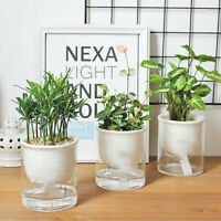 Plastic Self-Watering Plant Flower Pot Lazy Planter Flowerpot Office Deco Modern