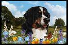 Summer Floor Mat - Bernese Mountain Dog 39051