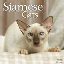Siamese Cats Calendar 2022 Cute Wall 15% OFF MULTI ORDERS!